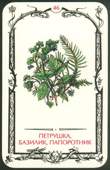 Таро теней карта Петрушка базилик папоротник